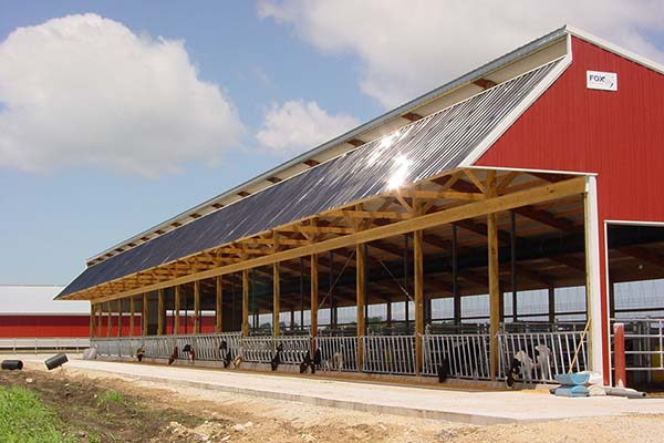 custom calf barn designed and built by Fox Structures