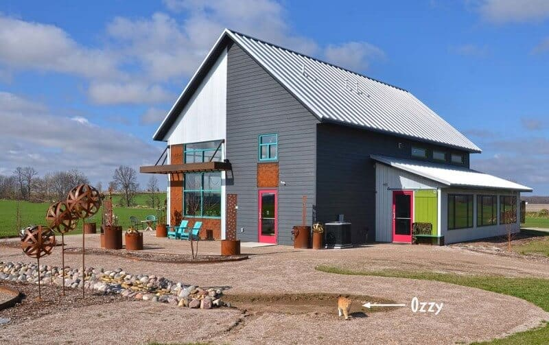 Front right view of the Hidden Hollow Garden Art building by Fox Structures, with Ozzy the cat walking around outside